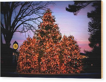 Wood Print featuring the photograph Christmas At The New York Botanical Garden by Aurelio Zucco