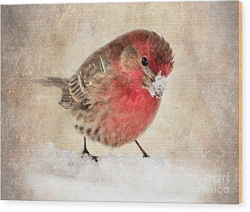 Christmas Card 9 Wood Print by Betty LaRue