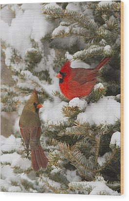 Christmas Card With Cardinals Wood Print
