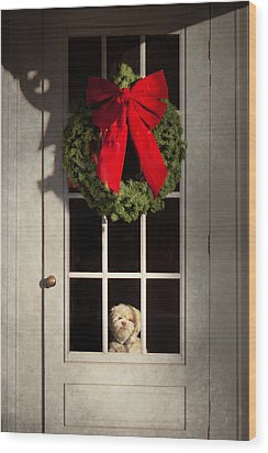 Christmas - Clinton Nj - Christmas Puppy Wood Print by Mike Savad