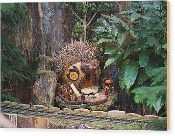 Christmas Display - Us Botanic Garden - 011322 Wood Print by DC Photographer