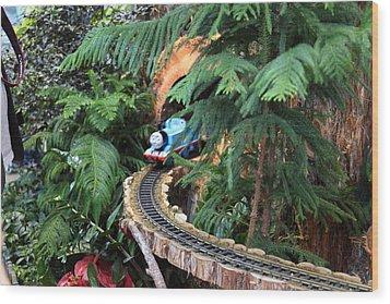 Christmas Display - Us Botanic Garden - 011326 Wood Print by DC Photographer
