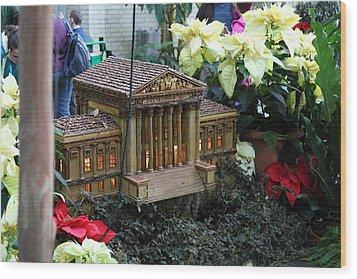 Christmas Display - Us Botanic Garden - 01133 Wood Print by DC Photographer
