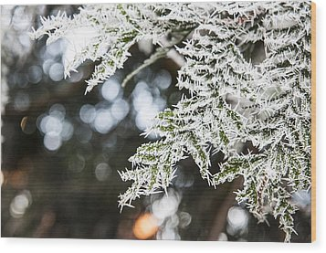 Wood Print featuring the photograph Christmas Frost by David Isaacson