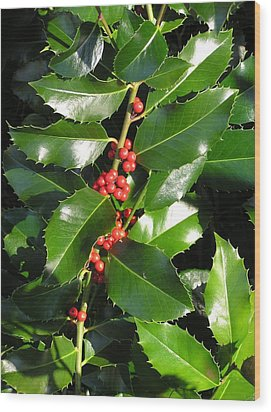 Christmas Holly Wood Print