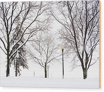 Wood Print featuring the photograph Christmas In Skaneateles by Margie Amberge