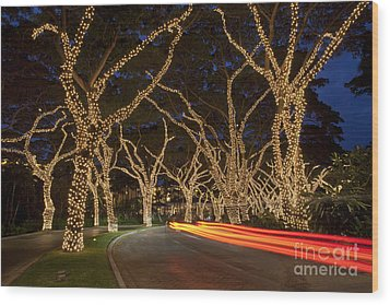 Christmas In Wailea Wood Print