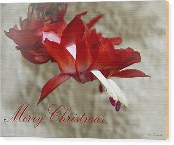 Christmas Red Beauty Card Wood Print