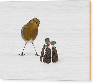 Christmas Robin Wood Print by Tim Gainey