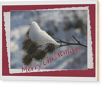 Christmas Snow Bird Wood Print