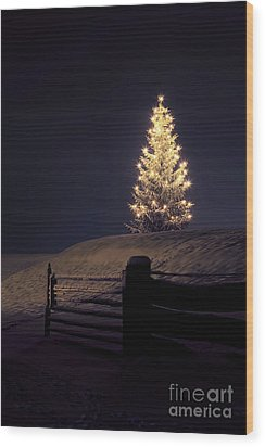 Christmas Tree In Snow Wood Print