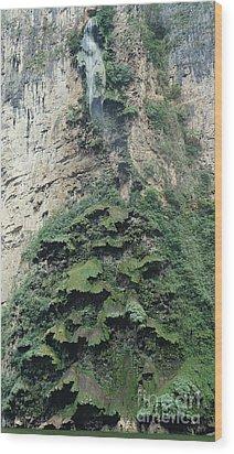 Christmas Tree Waterfall Wood Print