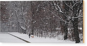 Wood Print featuring the photograph Christmas Walk by Jacqueline M Lewis