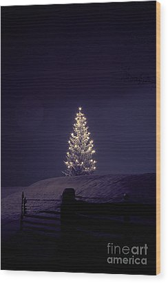 Christmastree Wood Print