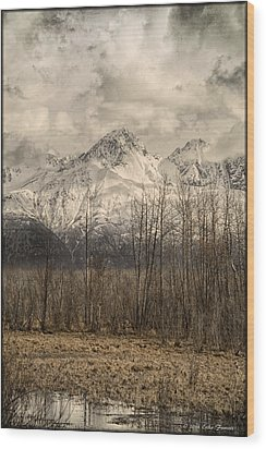 Chugach Mountains In Storm Wood Print