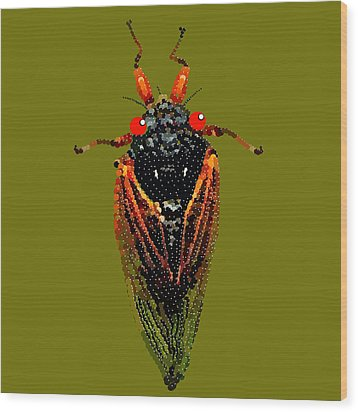 Cicada In Green Wood Print by R  Allen Swezey
