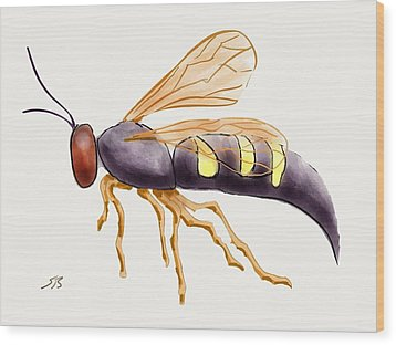 Cicada Killer Wasp Wood Print by Stacy C Bottoms
