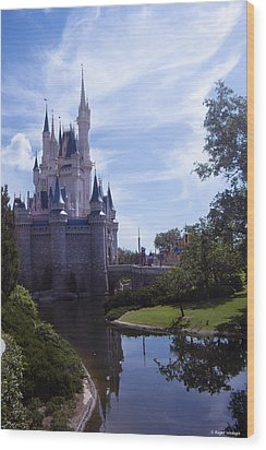 Cinderella Castle Wood Print by Roger Wedegis