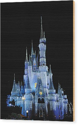 Cinderella's Castle Wood Print by Robert  Moss