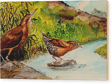 Wood Print featuring the painting Cinnamon Bittern by Jason Sentuf