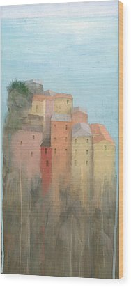 Cinque Terre Wood Print by Steve Mitchell