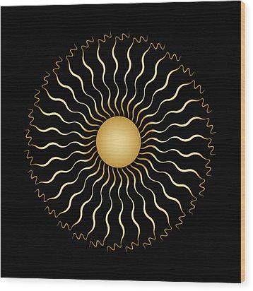 Circularity No. 1506 Wood Print by Alan Bennington