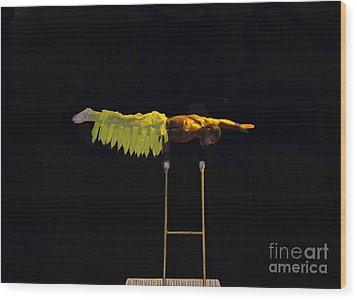 Cirque 2 Wood Print by Cindy Lee Longhini