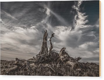 Cirrus Clouds At Sunset  Wood Print by Marc Crumpler