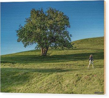 Citadell Hill Stroll Wood Print by Ken Morris