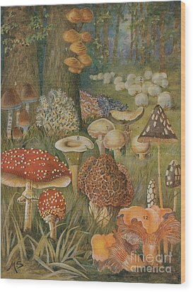 Citizens Of The Land Of Mushrooms Wood Print by Science Source