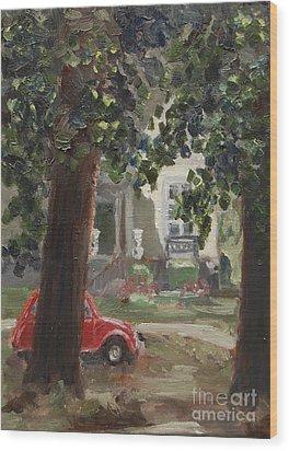 Citroen 2cv And Marialust Apeldoorn Wood Print by Ernst Dingemans