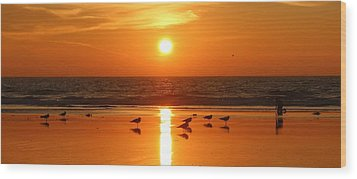 Clam Digging At Sunset - 2 Wood Print by Christy Pooschke