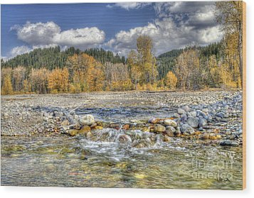 Wood Print featuring the photograph Clear Stream by Wanda Krack