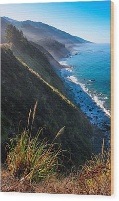 Cliff Grass At Big Sur Wood Print by Adam Pender