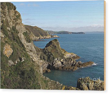 Cliffs In Cornwall Near Mevagissey Wood Print by Kiril Stanchev