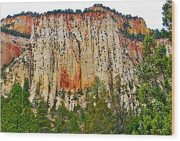 Cliffs Near Checkerboard Mesa Along Zion-mount Carmel Highway In Zion National Park-utah Wood Print