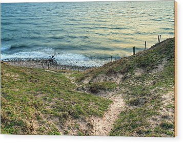 Cliffside Path Wood Print
