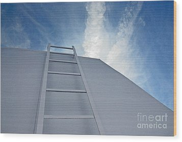 Wood Print featuring the photograph Climb Up by Lena Wilhite