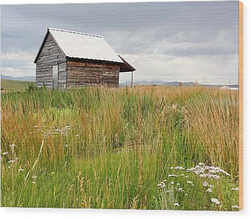 Cline Ranch Outbuilding II Wood Print