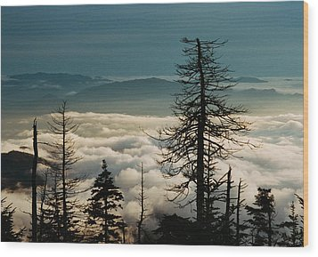 Wood Print featuring the photograph Clingman's Dome Sea Of Clouds - Smoky Mountains by Mountains to the Sea Photo