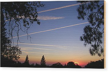 Cloaked Airplanes Wood Print by Tom Mansfield
