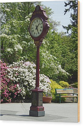Wood Print featuring the photograph Clock In Park by Laurie Tsemak