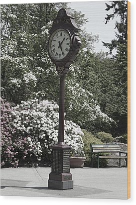 Wood Print featuring the photograph Clock In Park Muted by Laurie Tsemak