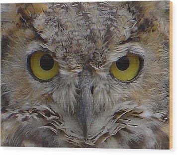 Close-up Wood Print by Blair Wainman
