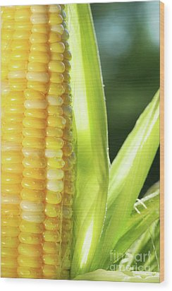 Close-up Of Corn An Ear Of Corn  Wood Print by Sandra Cunningham