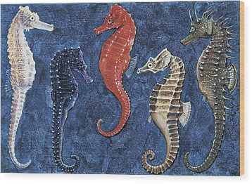 Close-up Of Five Seahorses Side By Side  Wood Print by English School