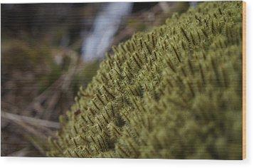 Close Up Wood Print by Riley Handforth