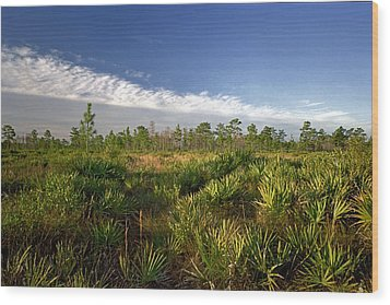 Cloud Line And Palmetto. Triple N Ranch.   Wood Print