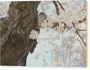 Cloud Of Petals Wood Print