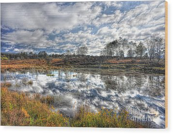 Cloud Reflections In Beaver Pond Canaan Valley Wood Print by Dan Friend